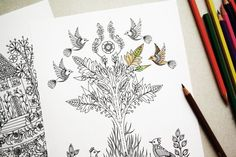 Colouring Pages  Set of 2 Botanical Art Nature by MenisArt on Etsy
