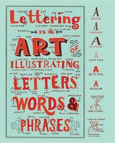 Lettering Anatomy - Giclee Print — Mary Kate McDevitt