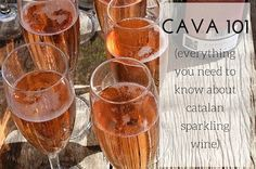 Catalan sparkling wine, also known as cava, is an important part of the region's gastronomy and culture. Read a brief introduction to cava wine, and salut!