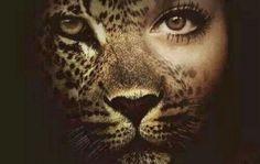 10 причини Лъвът да е най-добрият ти приятел и най-лошият враг (Написано от Лъв) - https://www.diana.bg/10-prichini-lavat-da-e-naj-dobriyat-ti-priyatel-i-naj-loshiyat-vrag-napisano-ot-lav/