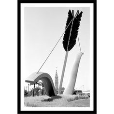 "Gallery Direct Cupid's Arrow Framed Photographic Print Size: 36"" H x 25"" W"