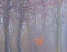 "Check out new work on my @Behance portfolio: ""Winter in Linschoten nr 4"" http://be.net/gallery/47120147/Winter-in-Linschoten-nr-4"