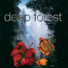 Found Marta's Song by Deep Forest with Shazam, have a listen: http://www.shazam.com/discover/track/531846