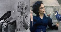 Eva Green as Miss Peregrine paying homage to Tippi Hedren's photo when she was in Alfred Hitchcock's 'The Birds'