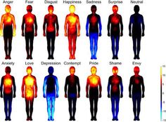 Emotions manifest themselves as sensations in the body. While anxiety is often accompanied by a tight feeling in the chest, love may elicit a warm feeling throughout the body. But now, a new study from researchers in Finland reveals that perceptions of these sensations are consistently similar around the world, suggesting an underlying biological basis.
