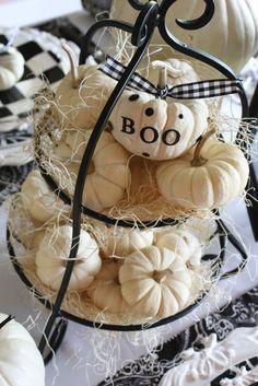 Love these mini white pumpkins!