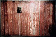 Hermann Nitsch - ----