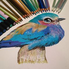 Artist Reveals Her Mixed Media Tools By Placing Them Next To Her Drawings…