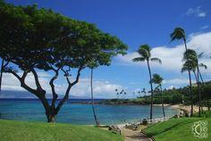 Kapalua Beach in Lahaina, Maui, Hawaii | Hawaiian Beach Rentals
