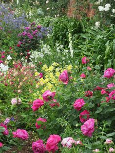 Mottisfont Abbey. Inspiration for front flower beds against the brick. Love the climbing roses.