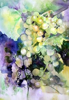 watercolor paintings of grapes