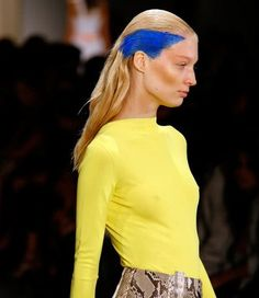 Punk Bright-Colored Hair at the Altuzarra Spring 2011 Show