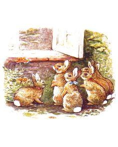 Beatrix Potter - The Tale of The Flopsy Bunnies - 1909 - Bunnies Look into McGregors Window