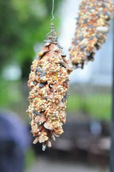 Dennenappel insmeren met pindakaas om m daarna door het zaad te halen...vogels zullen smullen!