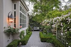 beautiful side yard with boxwood hedge, stone