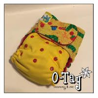 Hungry Little Caterpillar Ai2 cloth diaper with PUL.  Love how this looks!