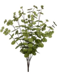 Include artificial eucalyptus in your silk flower centerpieces and wedding bouquets, find it at Afloral.com.