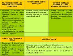 Principios de las rotaciones en la agricultura ecológica | ECOagricultor