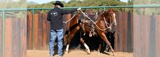 Training Tip: Ask Clinton: Horse Playing With the Bit – Downunder Horsemanship