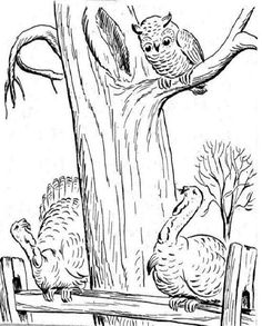 25 coloring pages for Thanksgiving Thanksgiving Pictures To Color, Happy Thanksgiving Turkey, Vintage Thanksgiving, Thanksgiving Ideas, Owl Coloring Pages, Pyrography Patterns, Kids Zone, Holidays Halloween, Happy Fall