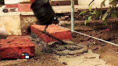Mejores 540 Imagenes De Como Hacer Una Jardinera De Ladrillos En - Como-hacer-una-jardinera