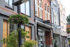 🎉Feest voor de ondernemers in de #Haverstraatpassage #Enschede (centrum).🎉Onze 🌸BLOEMBASKETS 🌺 hangen! Nu nog even flink groeien komende weken!