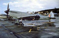 Aircraft of the R.A.F. and S.A.A.F. during World War II (3)