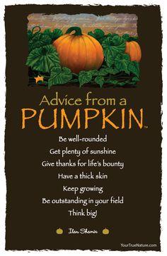 Autumn Equinox:  Advice from a Pumpkin, for the #Autumn #Equinox.