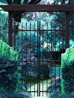 Gate to a secret garden