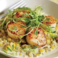 Sea Scallops with Creamed Corn and Tarragon