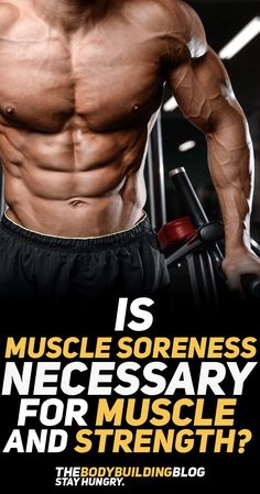 Find out the answer to one of the oldest and most confusion questions in the and industry - Is muscle soreness necessary for growth and development? The answer might surprise you. Body Building Tips, Muscle Building Workouts, Bodybuilding Transformation, Weight Trainer, Muscle Building Women, Muscle Diet, Muscle Nutrition, Burn Fat Build Muscle, Plyometric Workout