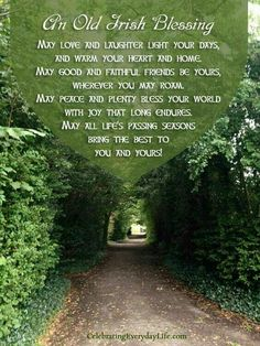 An Old Irish Blessing {A St. Patrick's Day Quote} Old Irish Bless… – Green Clover Immigration Quebec, Old Irish Blessing, Irish Prayer, Gaelic Blessing, Happy St Patrick, Great Quotes, Inspirational Quotes, Quick Quotes, Short Quotes