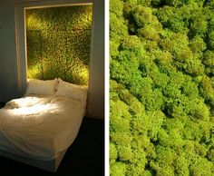 "Horticultural Building Systems: [Mid-Term] ""Moss Wall"" by Michael LeClare and Molly McGowen"