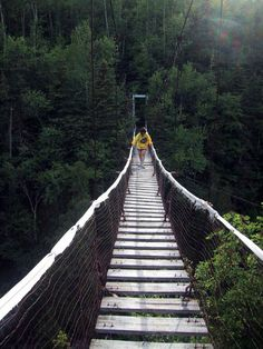 Yikes been on this bridge!Pukaskwa's Coastal Trail, Pukaskwa National Park, ON. Canada National Parks, Travel Tours, Day Hike, Belleza Natural, Hiking Trails, Day Trips, The Great Outdoors, Wonders Of The World, State Parks