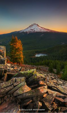 ~~ A new start | autumn, Mount Hood, Oregon by Dylan Toh~~