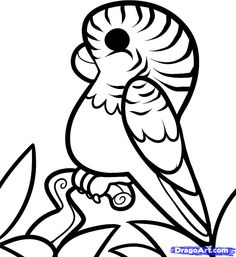 how to draw parakeets step by step   How to Draw a Cartoon Parakeet, Step by Step, Cartoon Animals, Animals ...
