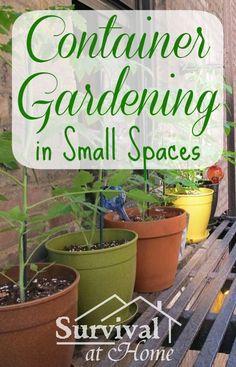 Container Gardening in Small Spaces | Survival at Home | #prepblogger #urban #garden
