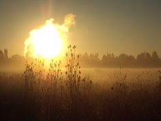 foggy sunrise  Vancouver, Washington