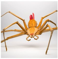 Creation • Origami • Spider by Jeremy Kool •