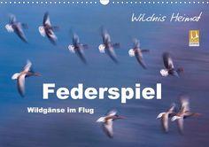 Federspiel - Wildgänse im Flug - CALVENDO Kalender von Ferry Böhme - #calvendo #calvendogold #kalender #fotografie #wildgans #voegel