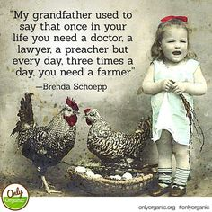 """""""My grandfather used to say that once in your life you need a doctor, a lawyer, a preacher but every day, three times a day, you need a farmer! Bantam Chickens, Pet Chickens, Country Life, Country Girls, Country Living, Country Charm, Farmers Day, Chicken Names, Organic Eggs"""