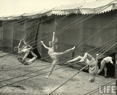 """The Circus Girls from Life Magazine, shot by the acclaimed photographer Nina Leen in we find our sassy subculture of circus girls in Sarasota, Florida, dubbed """"the home of the American circus"""". Vintage Circus Photos, Cirque Vintage, Vintage Photographs, Antique Photos, Old Circus, Circus Art, Circus Theme, Human Oddities, Aerial Dance"""