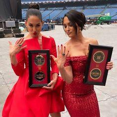 Brie Bella Wwe, Nikki And Brie Bella, Bella Sisters, The Bella Twins, Wwe Lucha, Famous Twins, Eddie Guerrero, Wwe Female Wrestlers, Wwe Womens