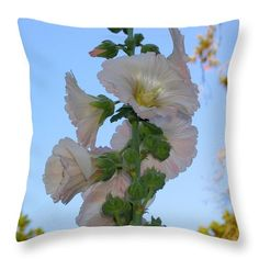 A pink hollyhock. Image by James B. Toy. Pillow by Pixels.com