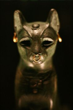 Bronze figure of a seated cat,From Saqqara, Egypt. Late Period, after 600 BC.