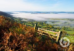 Photo Mist over south Shropshire, seen from the Long Mynd, near Church Stretton, England. - Shropshire and Beyond Picture Library Landscape Pictures, Landscape Paintings, Landscapes, Places In England, British Countryside, Photo Library, Mists, Landscape Photography, World