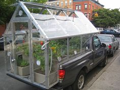 """spotted in Park Slope, Brooklyn, where a """"bumper"""" crop of tomatoes and peppers were growing in a greenhouse on the back of his truck."""