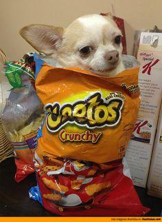 Cheetos con sorpresa