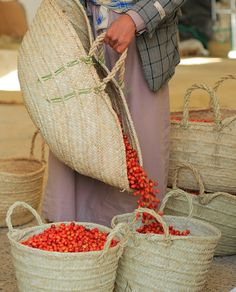 Coffee Origin, Natural Coffee, Coffee Plant, Highlands, Farmers, Straw Bag, Blueberry, Flora, Landscapes