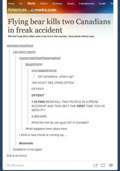 If they made a bearnado I think I would watch it lol Tumblr Funny, Funny Memes, Hilarious, Funny Quotes, Canada Jokes, Canada Funny, Canada Eh, Goody Two Shoes, Best Of Tumblr